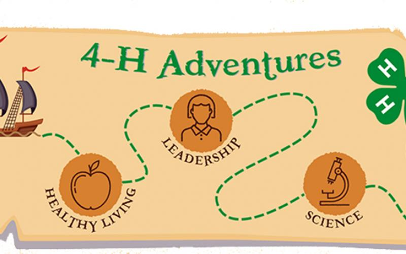 Florida 4-H offers virtual camps this summer due to COVID-19.